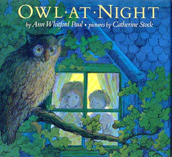 Owl At Night Picture Book